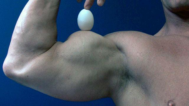 Яйца и бодибилдинг