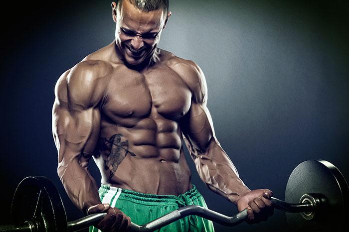 Тренировка мышечной массы