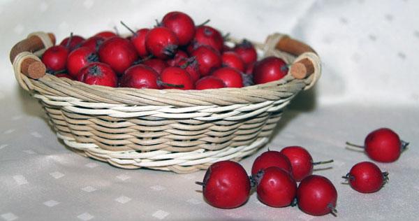 Ягоды боярышника в корзине