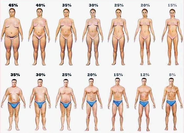 таблетки выводящие жир с организма
