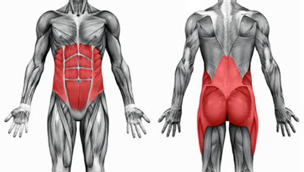 упражнения помогающие убрать жир на животе
