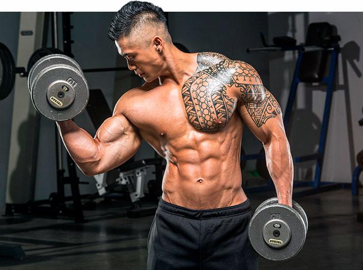 Тренировка мышц рук с гантелями