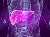 Натуральные способы лечения заболеваний печени