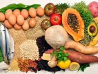 Performance Food : о пользе сбалансированного питания