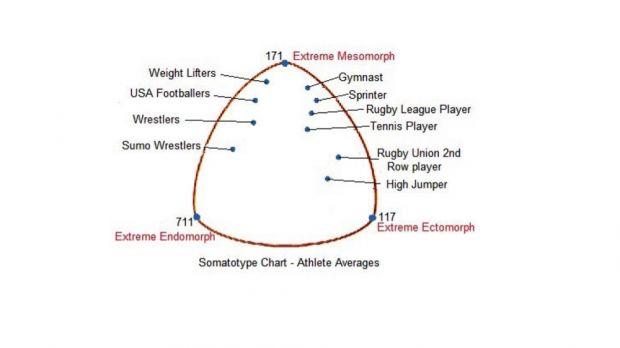 Спорт и типы телосложения