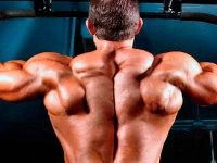 Как научиться подтягиваться с нуля: 4 упражнения для начинающих