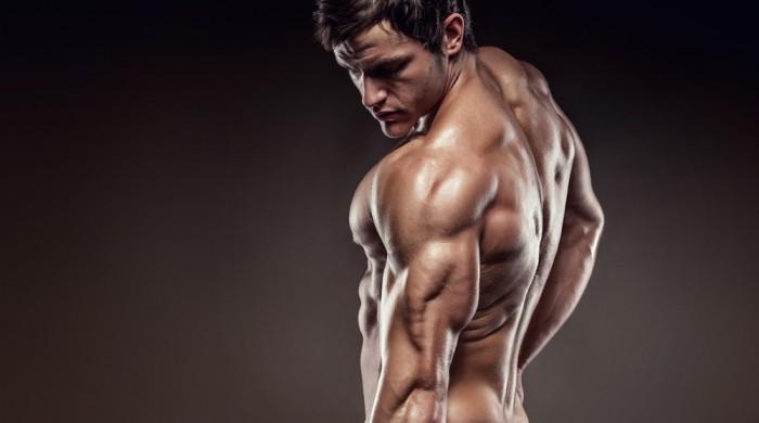 Как накачать трицепс лучшие упражнения для роста трицепса